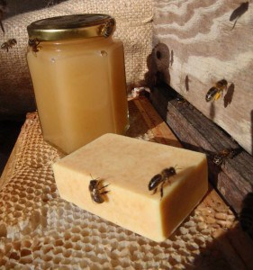 Goat milk soap made with Ganders Farm honey!